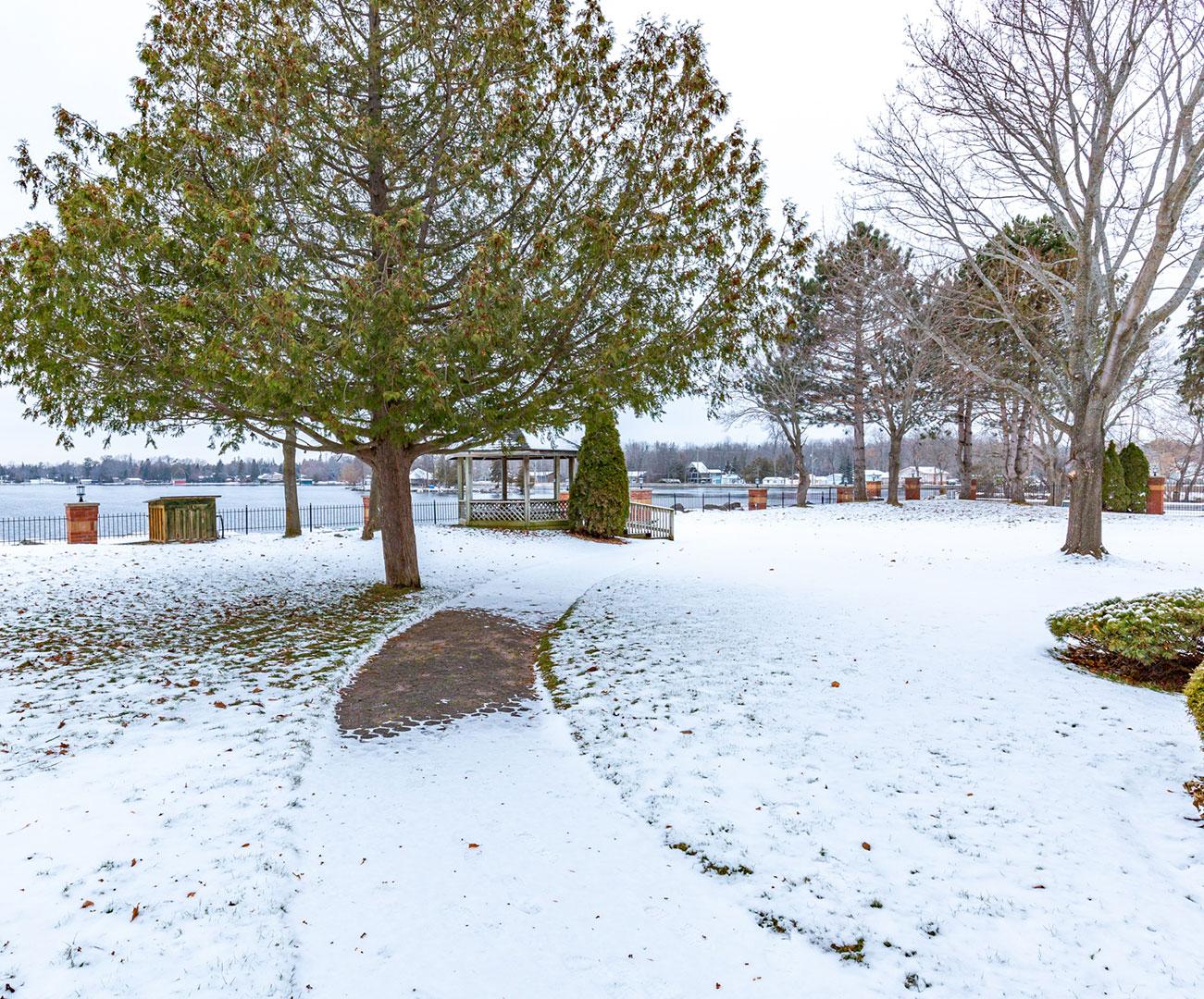 1 Sherwood St.,  Bobcaygeon, Ontario    - Photo 4 - RP5173265231